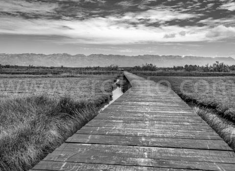 Fotografija za print-most-Ninsko blato